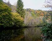 geography / travel, Germany, Baden_Wuerttemberg, landscapes, Black Forest, Nature Park Südschwarzwald South Black Forest, Wutach River, Europe, Baden ...