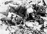 events, Second World War / WWII, Russia 1941, Soviet column after German air raid between Bialystok and Vaukavysk, dead body of a woman, July 1941, de...