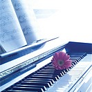 Rose and sheet music on piano