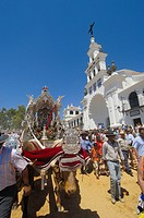 Pilgrims with decorated oxcart, pilgrimage Romeria to El Rocio, Huelva province, Andalucia, Spain