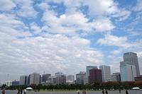 Skyscrapers in Tokyo, Japan, Asia