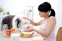 Young woman feeding Old English Shepherd at table