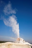 White Dome Geyser, Yellowstone National Park, Wyoming, USA