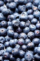 Blueberries, full frame