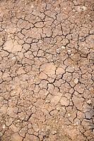 Dürre, ausgetrockneter Boden _ Dry ground