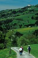 Wanderer in den Hügeln des Mostviertels nahe dem Sonntagberg, Österreich, Niederösterreich, Mostviertel _ Hiking in the Mostviertel Region, Austria, L...