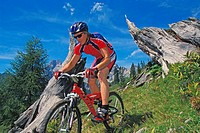 Mountainbike _ Biker in Action