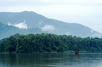 PERIYAR RIVER, THATTEKAD BIRD SANCTUARY, ERNAKULAM DIST