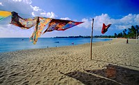 Turtle Beach Tobago Sarongs Blowing in Wind