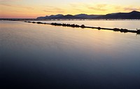 Salinen von Ses Salines im Abendlicht, Ibiza / salt works of Ses Salinesin the evening light, Ibiza