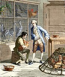Spallanzani´s digestion experiment. Historical artwork of an experiment on digestion carried out by the Italian biologist Lazzaro Spallanzani 1729_179...