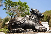 Statue of Nandi the bull in a temple, Chamundeswari Temple, Chamundi Hills, Karnataka, India