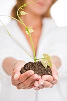 Woman plant stem
