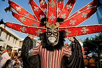 Dominican Republic _ Centre _ The Cibao _ Santiago _ Carnival