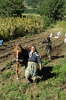 Bulgaria _ South West Region _ Region Rhodopes mountains _ Peasants in the fields