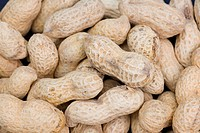 Peanuts, close_up