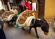 View of a man walking with a donkey on the road, Fez, Morocco