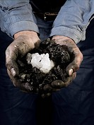 A miner holding quartz crystals in cupped hands