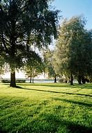 A park Ekenas Finland.
