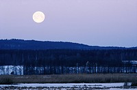 Full moon over landscape.