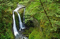 Triple Falls, Columbia River Gorge National Scenic Area, Oregon, USA