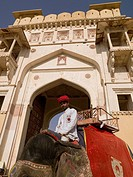 Amber Fort,Rajasthan,India,Man sitting on elephant