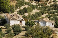 Old Farmhouse and Outbuildings in Andalucia, Spain.