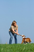 woman _ playing with half breed dog Podenco Pointer on meadow