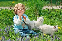 small boy with two Neva Masquarade kittens on meadow
