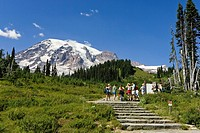 A group of hikers and Mount Rainier under blue sky, Washington, USA