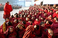 Gelug (Yellow Hat sect) little monks, Gerdeng Tibetan Monastery in Aba, Sichuan, China