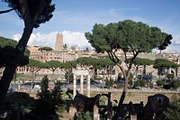Imperial roman forums in Rome