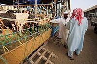 United Arab Emirates, Al Ain, livestock market