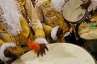 Carnival, Parade of the Schools of Samba 2006, Rio de Janeiro, Brazil
