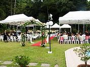 Ceremony of Marriage, São Paulo, Brazil