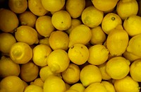 Full Frame of Lemon