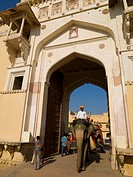 Mahouts riding their elephants trough gate at Amber Fort, Amber, Jaipur, Rajasthan, India
