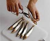 Gutting sardines