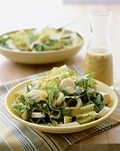 Salad with Romaine Lettuce and Avocado, Dressing in Bottle