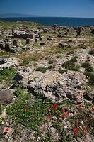 Italy, Sardinia, Oristano Region, Sinis Peninsula, Tharros, ruins of ancient Phoenician city