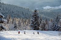 France, Isere, Vercors Natural Regional Park, Lans_en_Vercors winter resort village, altitude domain of Montagnes de Lans from 1400m to 1810m