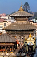 Nepal, Kathmandu Valley, listed as World Heritage by UNESCO, Kathmandu, Pashupatinath Hindu temple dedicated to Shiva