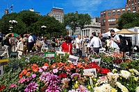 United States, New York City, Lower Manhattan, flowers market