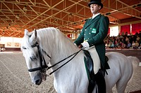 Slovenia, Kras region, Lipica, Lipizzans horses, dressage at the National Stud Farm
