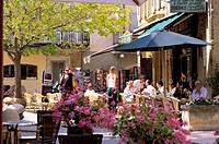 France, Vaucluse, Luberon, Lourmarin, labelled Les Plus Beaux Villages de France The Most Beautiful Villages of France, Place de l´Ormeau Ormeau squar...