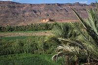 The ksar of Tamnougalt, Draa river valley, Morocco Clear contrast between the fertile green valley and the barren desert hills