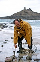 France, Cotes d´Armor, Sables d´Or les Pins, Michel Hellio, Chef of La Voile d´Or hotel restaurant, foot fishing in the lagoon