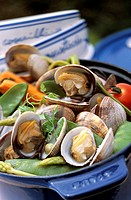 France, Ille et Vilaine, Saint Malo, Cocotte of clams and vegetables here, the recipe for restaurant Benetin