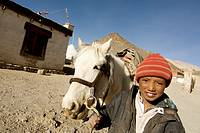 Boy with horse, Poga Sumdo litte village inhabited by Tibetan refugees on the way to Lake Moriri area, Rupshu Valley, Ladakh, Jammu and Kashmir, India