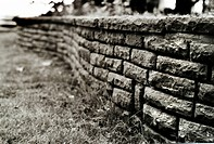 A low brick wall in a garden
